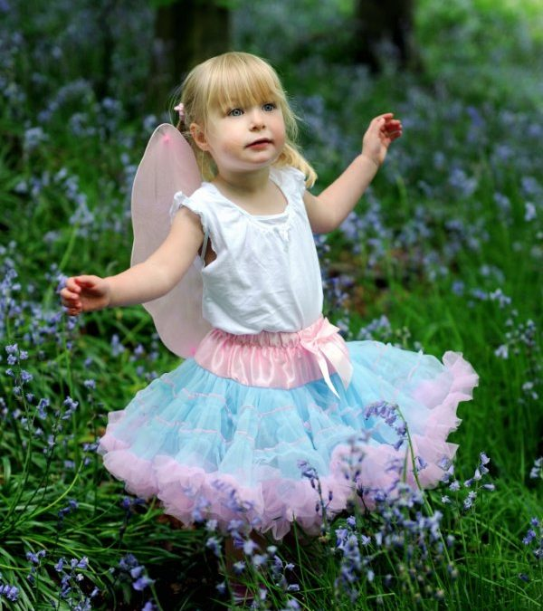 Bluebell Fairy